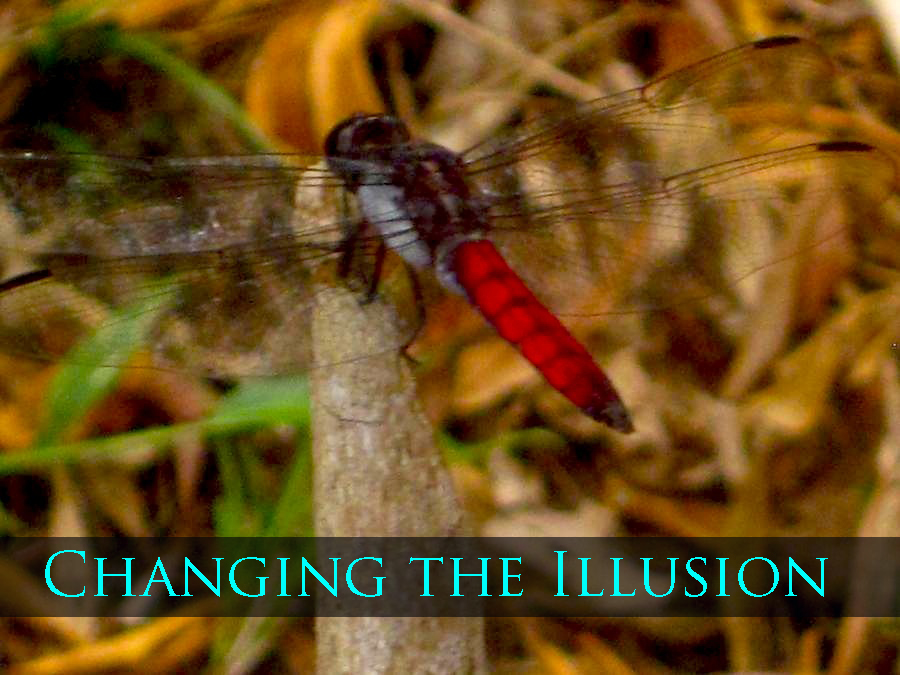 changing the illusion