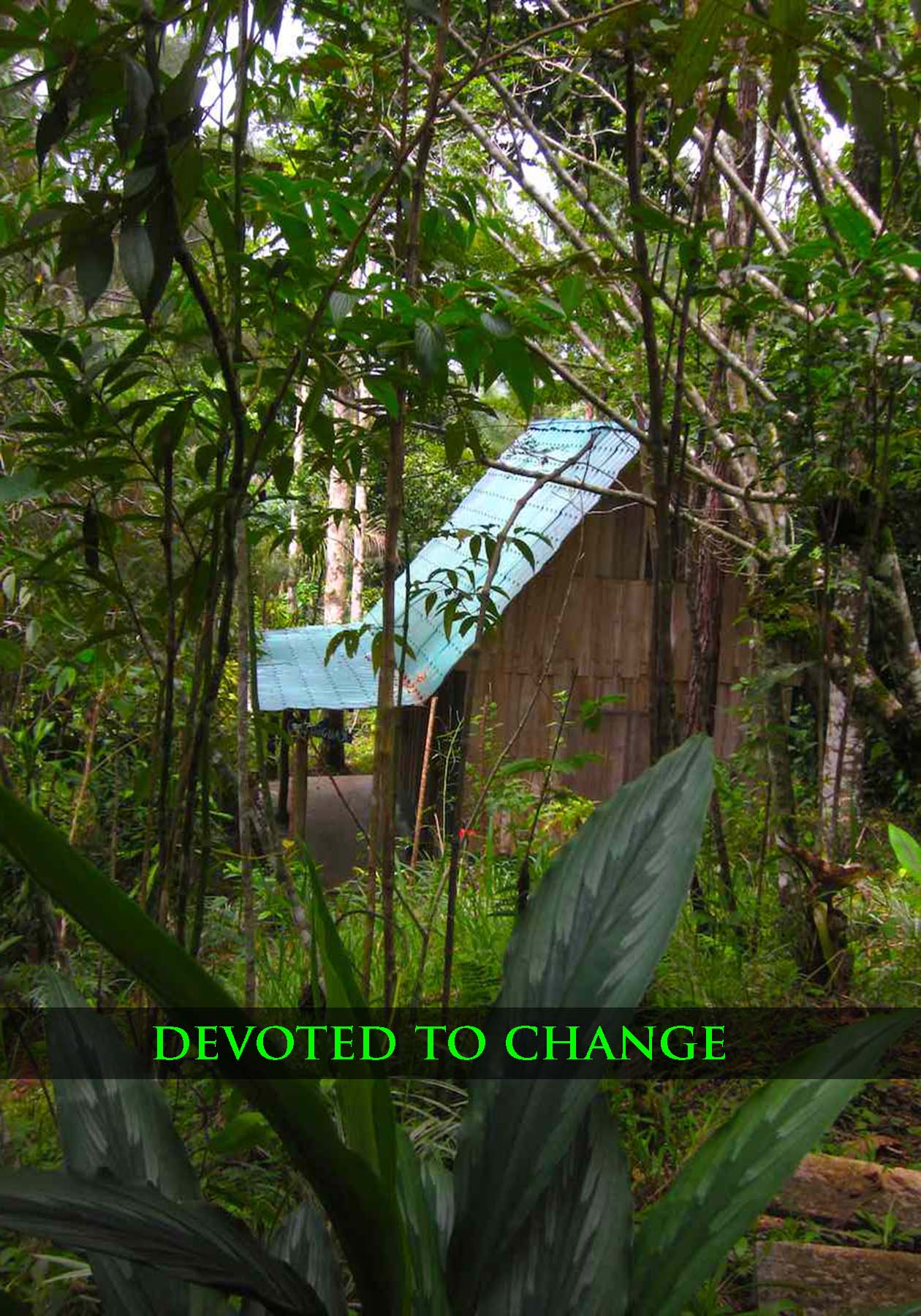 devoted to change