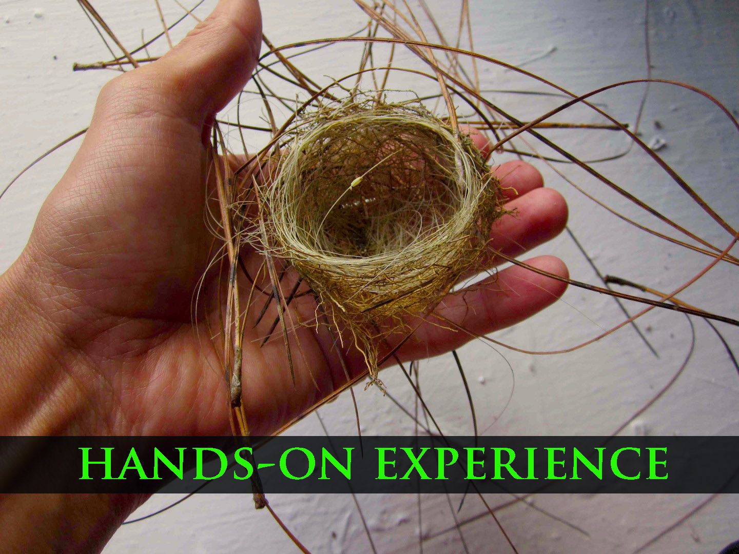 hands on experience