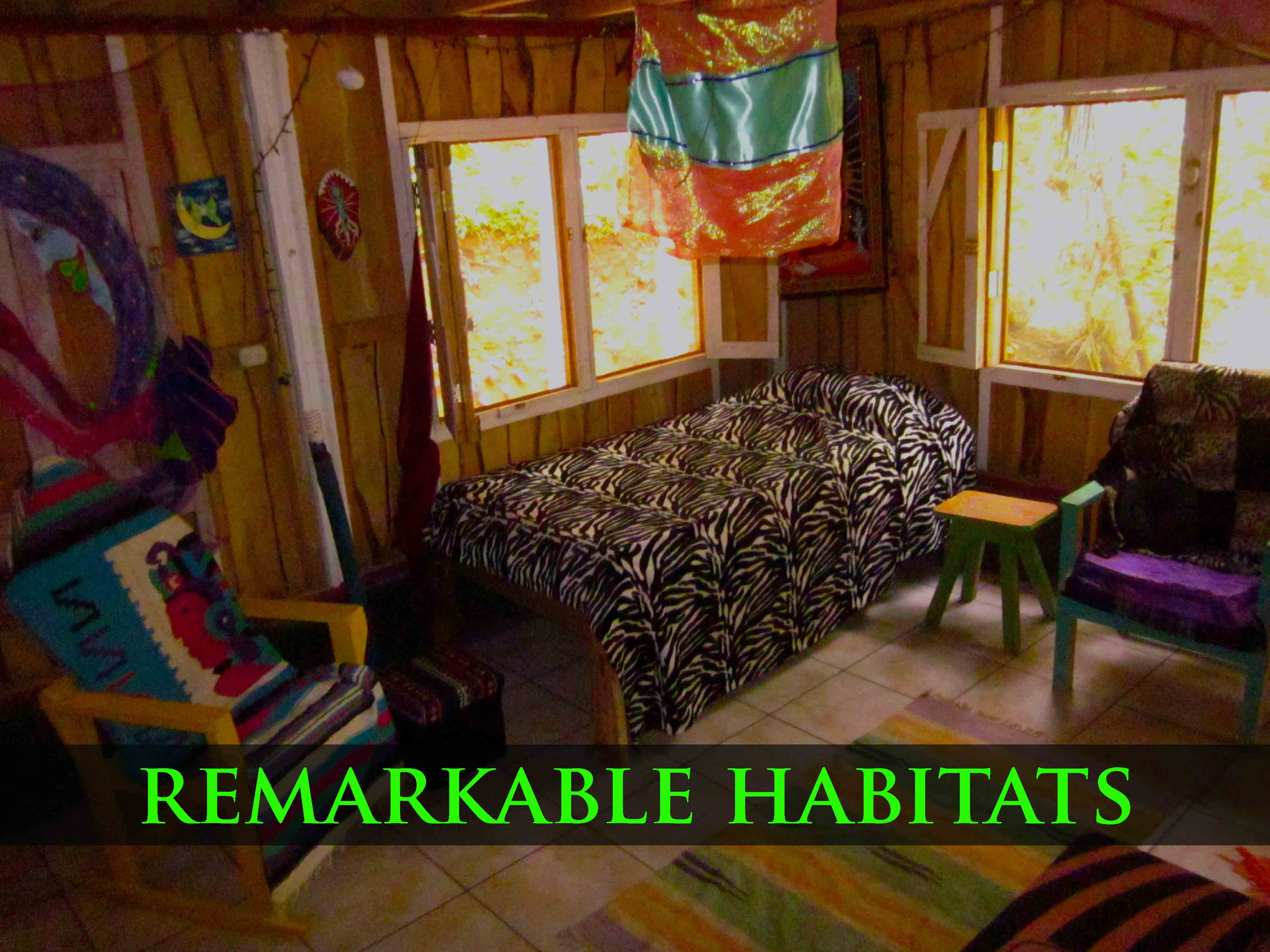 remarkable habitats
